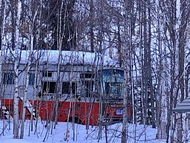 馬運車3.jpg